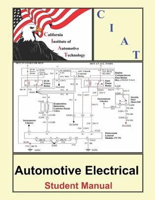 A6 Alternative Study Guide